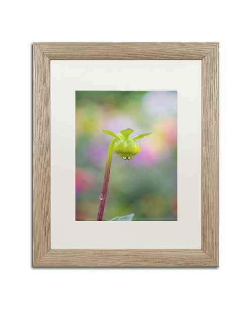 "Trademark Global Cora Niele 'Dahlia Bud' Matted Framed Art - 20"" x 16"" x 0.5"""