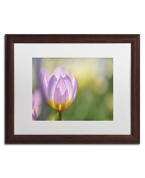 "Trademark Global Cora Niele 'Tulip Lilac Wonder' Matted Framed Art - 20"" x 16"" x 0.5"""