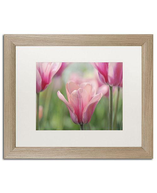 "Trademark Global Cora Niele 'Tulip Mirella' Matted Framed Art - 20"" x 16"" x 0.5"""