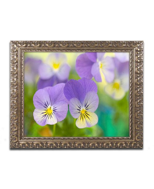 "Trademark Global Cora Niele 'Violets' Ornate Framed Art - 20"" x 16"" x 0.5"""
