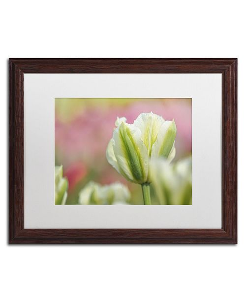 """Trademark Global Cora Niele 'White and Green Tulip' Matted Framed Art - 20"""" x 16"""" x 0.5"""""""