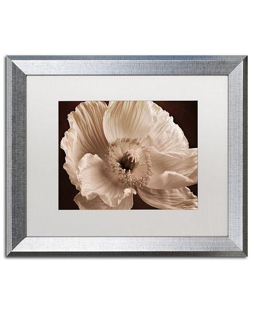 "Trademark Global Cora Niele 'Sepia Poppy I' Matted Framed Art - 20"" x 16"" x 0.5"""