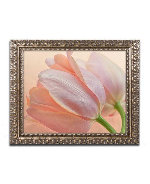 """Trademark Global Cora Niele 'Two Orange Tulips' Ornate Framed Art - 20"""" x 16"""" x 0.5"""""""