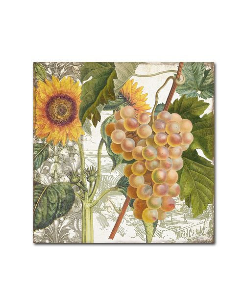 """Trademark Global Color Bakery 'Dolcetto IV' Canvas Art - 35"""" x 2"""" x 35"""""""