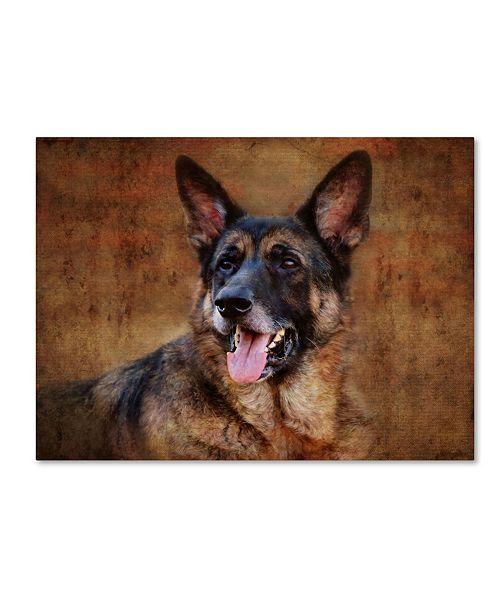 "Trademark Global Jai Johnson 'German Shepherd' Canvas Art - 19"" x 14"" x 2"""