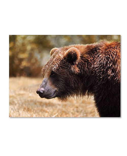 "Trademark Global Jai Johnson 'Grizzly Watch' Canvas Art - 47"" x 35"" x 2"""