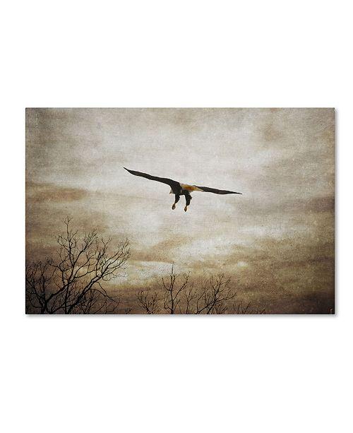 "Trademark Global Jai Johnson 'Home Safely Bald Eagle' Canvas Art - 32"" x 22"" x 2"""