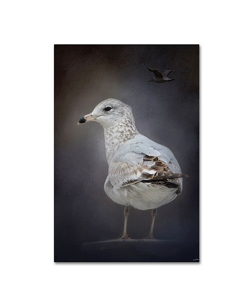"Trademark Global Jai Johnson 'Perched Nearby Gull' Canvas Art - 32"" x 22"" x 2"""