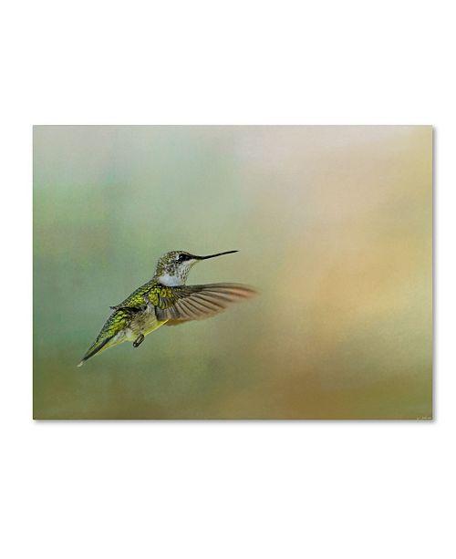 "Trademark Global Jai Johnson 'Peaceful Day With A Hummingbird' Canvas Art - 24"" x 18"" x 2"""