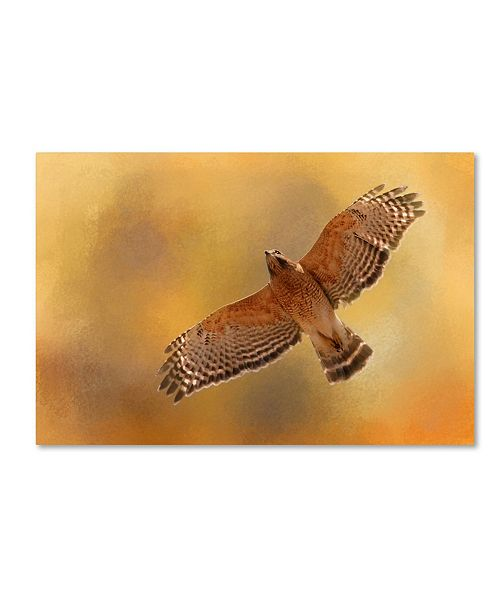 "Trademark Global Jai Johnson 'Raptors Afternoon Flight' Canvas Art - 19"" x 12"" x 2"""
