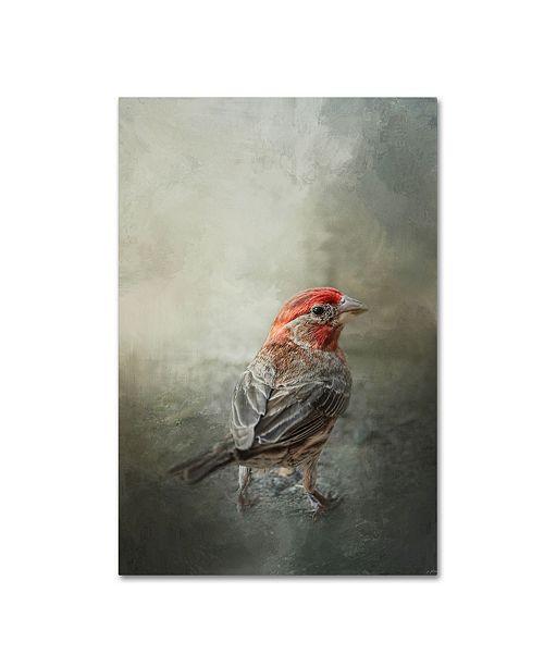 "Trademark Global Jai Johnson 'Little Red After The Storm' Canvas Art - 24"" x 16"" x 2"""
