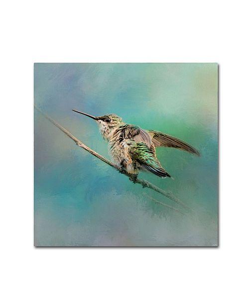 "Trademark Global Jai Johnson 'Hummingbird On Mint' Canvas Art - 14"" x 14"" x 2"""