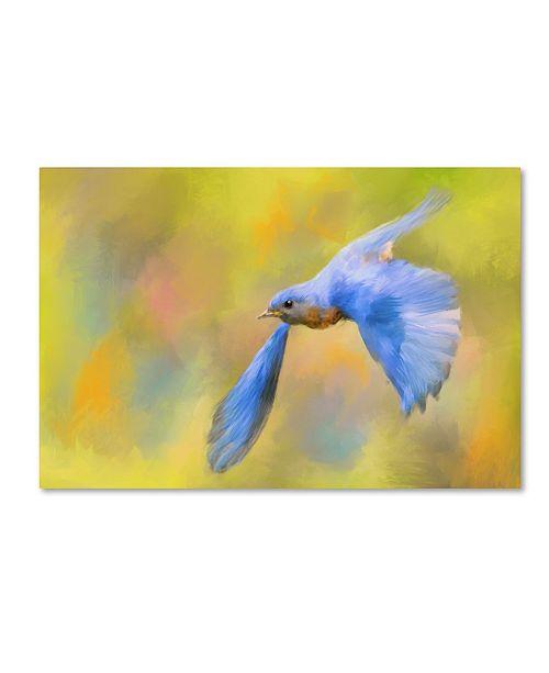"Trademark Global Jai Johnson 'Bluebird Spring Flight' Canvas Art - 32"" x 22"" x 2"""