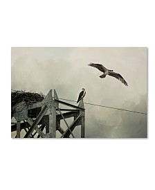 "Jai Johnson 'Ospreys At Pickwick' Canvas Art - 19"" x 12"" x 2"""