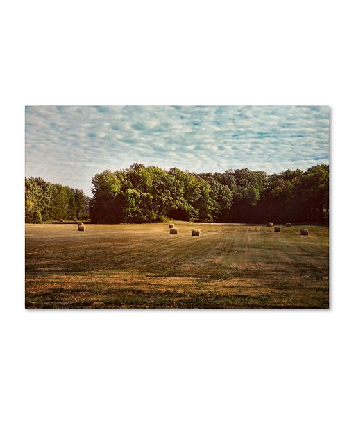 "Trademark Global Jai Johnson 'Harvest Time' Canvas Art - 24"" x 16"" x 2"""