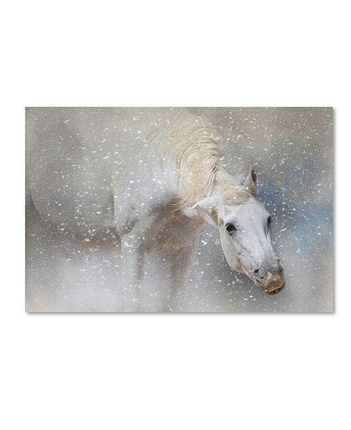 "Trademark Global Jai Johnson 'Snow Tickle' Canvas Art - 19"" x 12"" x 2"""