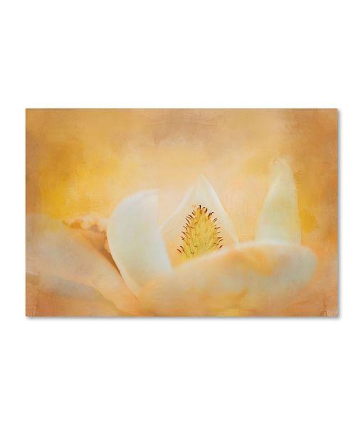 "Trademark Global Jai Johnson 'Late Magnolia 2' Canvas Art - 19"" x 12"" x 2"""