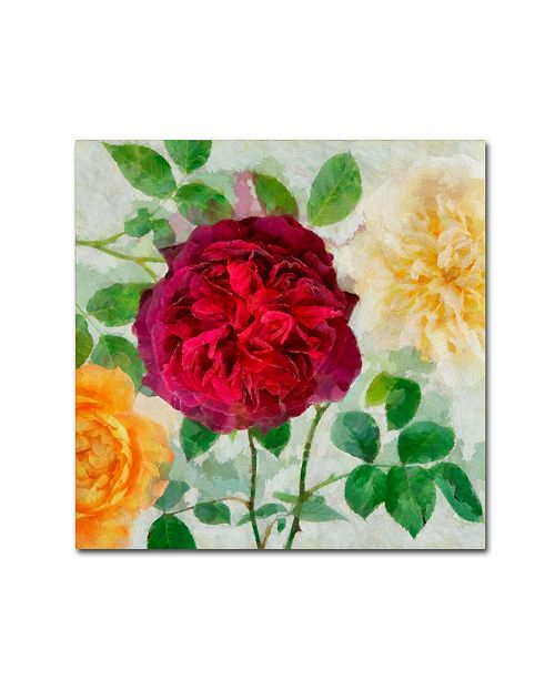 "Trademark Global Cora Niele 'Peonies And Roses Ii' Canvas Art - 18"" x 18"" x 2"""