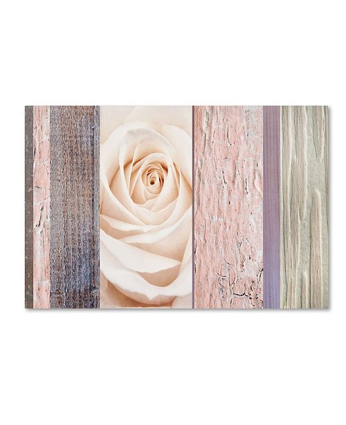 "Trademark Global Cora Niele 'Ivory Rose Ccollage' Canvas Art - 19"" x 12"" x 2"""