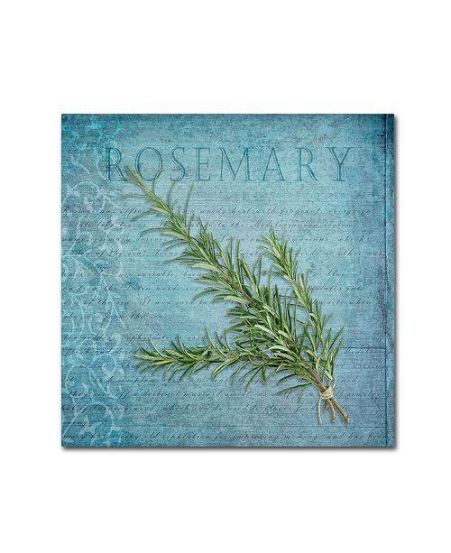 "Trademark Global Cora Niele 'Classic Herbs Rosemary' Canvas Art - 18"" x 18"" x 2"""