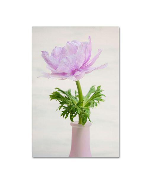 "Trademark Global Cora Niele 'Lilac Anemone' Canvas Art - 19"" x 12"" x 2"""