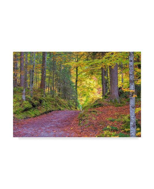 "Trademark Global Cora Niele 'Wood Walk Painting' Canvas Art - 32"" x 22"" x 2"""
