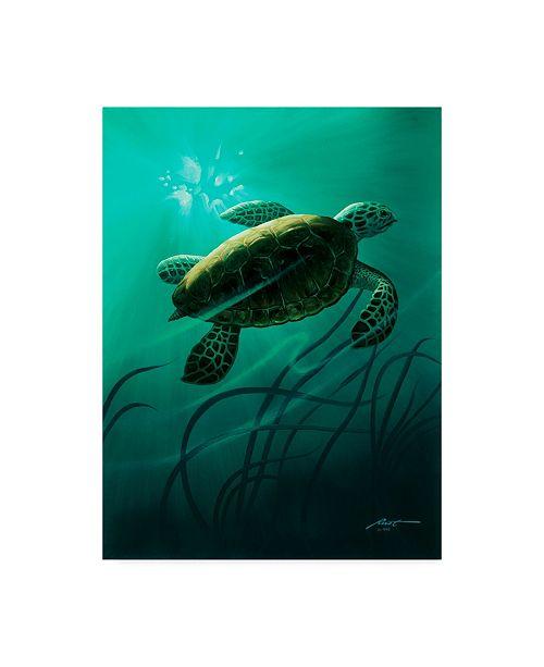 "Trademark Global D. Rusty Rust 'Green Sea Turtle' Canvas Art - 24"" x 18"" x 2"""