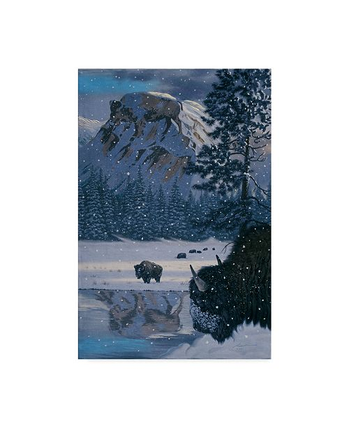 "Trademark Global D. Rusty Rust 'Winter Buffalo' Canvas Art - 24"" x 16"" x 2"""