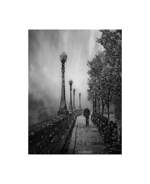 "Trademark Global David Senechal Photography 'Spring Snow Path' Canvas Art - 24"" x 2"" x 32"""