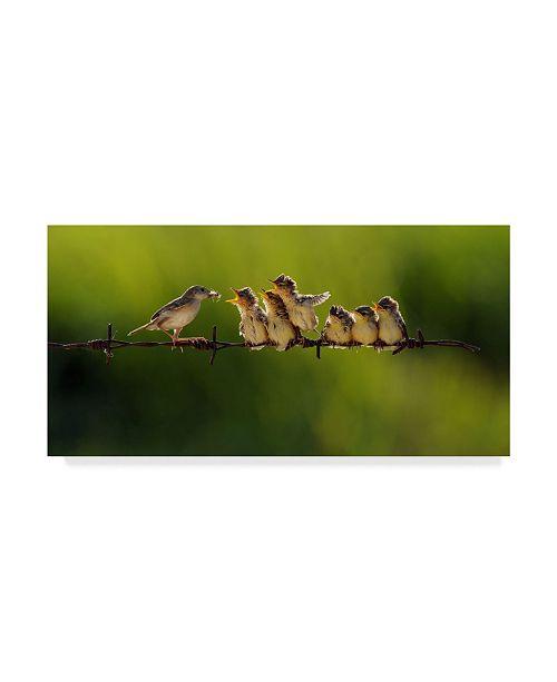 """Trademark Global Iwan Tirtha 'Bird Feeding Babies' Canvas Art - 19"""" x 10"""" x 2"""""""