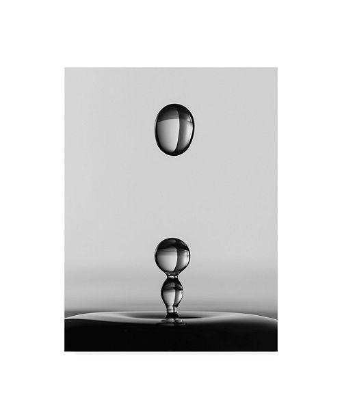 "Trademark Global Jacqueline Hammer 'Water Drops Centered' Canvas Art - 14"" x 2"" x 19"""