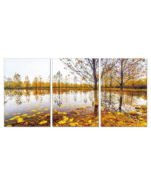"""Chic Home Decor Falling Leaves 3 Piece Wrapped Canvas Wall Art Autumn -20"""" x 40"""""""