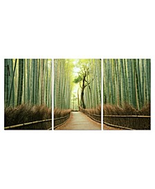 "Decor Pine Road 3 Piece Wrapped Canvas Wall Art Forest Scene -27"" x 60"""