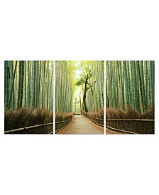 """Chic Home Decor Pine Road 3 Piece Wrapped Canvas Wall Art Forest Scene -27"""" x 60"""""""