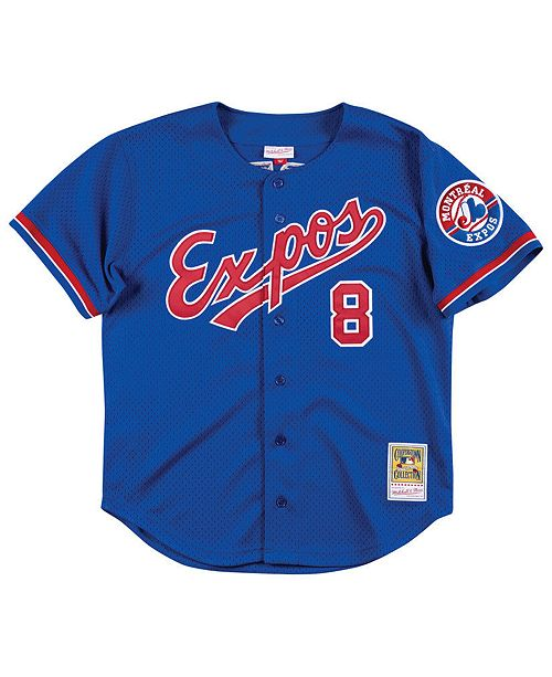 new arrival 739f5 c0249 Men's Gary Carter Montreal Expos Authentic Mesh Batting Practice V-Neck  Jersey