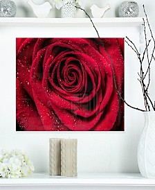"Designart 'Red Rose Petals With Rain Droplets' Floral Metal Wall Art - 20"" X 12"""