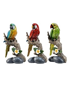 Macaw On Branch, Set of 3