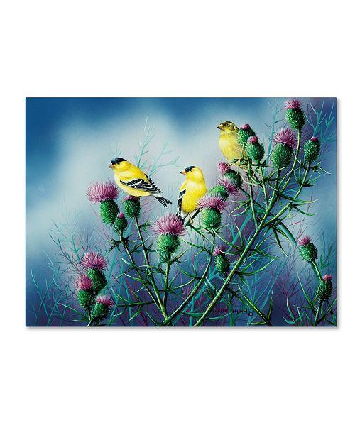 "Trademark Global Wanda Mumm 'American Goldfinch And Thistle' Canvas Art - 32"" x 24"" x 2"""
