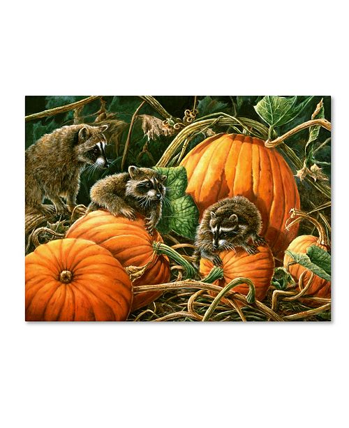 "Trademark Global Wanda Mumm 'Mischief' Canvas Art - 47"" x 35"" x 2"""