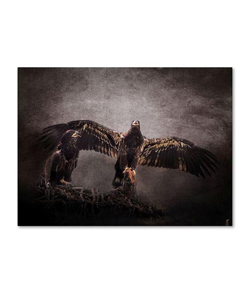 "Trademark Global Jai Johnson 'The Protector Juvenile Bald Eagles' Canvas Art - 19"" x 14"" x 2"""