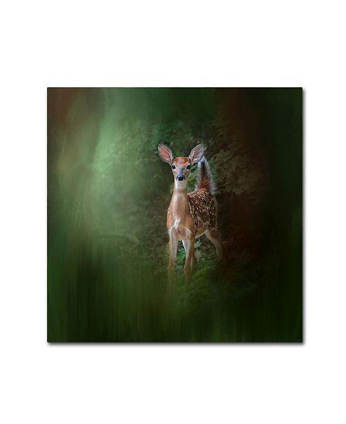 "Trademark Global Jai Johnson 'Woodsy Summer Fawn' Canvas Art - 14"" x 14"" x 2"""