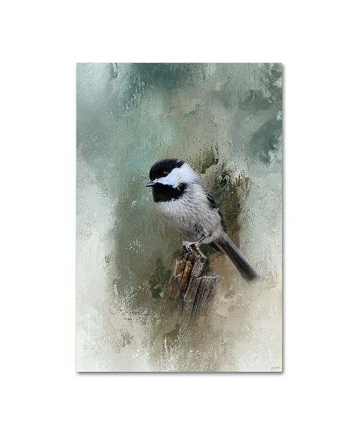 "Trademark Global Jai Johnson 'Winter Chickadee' Canvas Art - 47"" x 30"" x 2"""
