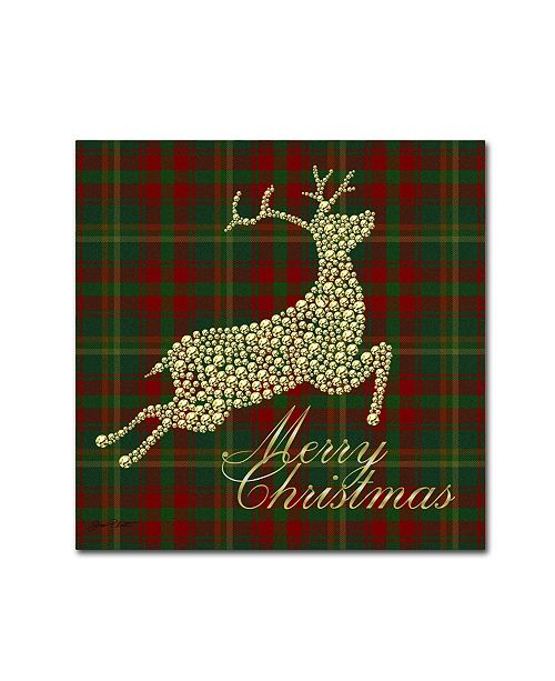 "Trademark Global Jean Plout 'Merry Christmas Plaid 2' Canvas Art - 35"" x 35"" x 2"""