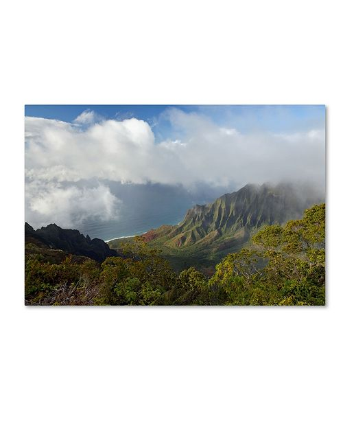 "Trademark Global Mike Jones Photo 'Kauai Kalalou Canyon' Canvas Art - 24"" x 16"" x 2"""