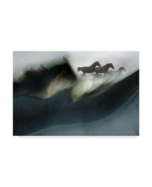 "Trademark Global Milan Malovrh 'Shadows Of Power' Canvas Art - 24"" x 2"" x 16"""