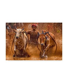 "Media Hendriko 'The Red Hat Bulls' Canvas Art - 47"" x 2"" x 30"""