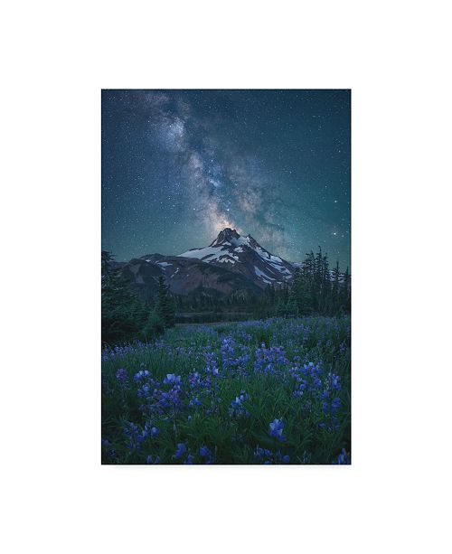 "Trademark Global Steve Schwindt 'Milky Way Above Mt Jefferson' Canvas Art - 12"" x 2"" x 19"""