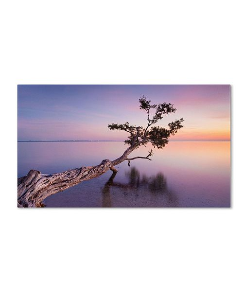 "Trademark Global Moises Levy 'Water Tree XV' Canvas Art - 19"" x 12"" x 2"""