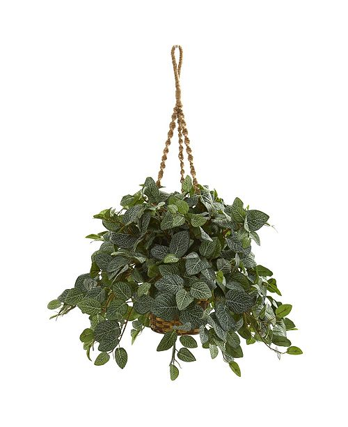 Nearly Natural Fittonia Artificial Plant in Hanging Basket