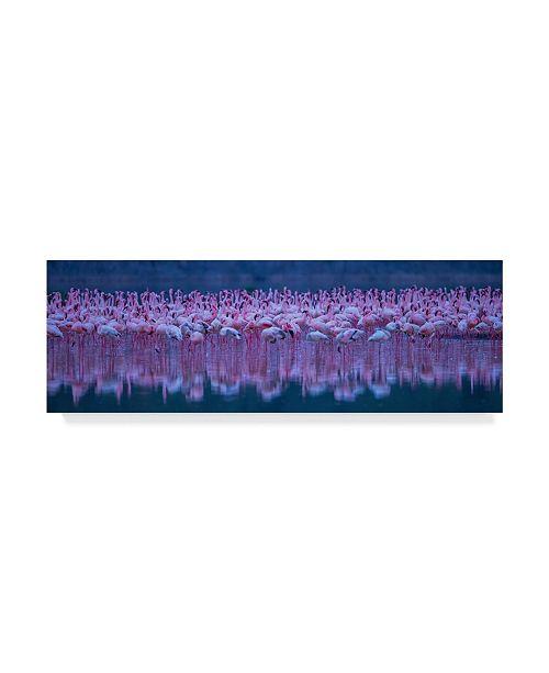 "Trademark Global David Hua 'Flamingos' Canvas Art - 47"" x 16"" x 2"""